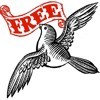 Freebird (Lynyrd Skynyrd) - Solo Cover
