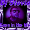 Dj Stevio Totall remix featuring Whitney Houston  I am your baby Tonight