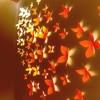 Paper Wallflowers (L E E B R A Y Original)