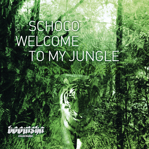 Schoco - Dhyana [clip - Boomsha Recordings - Welcome To My Jungle LP]