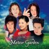 Qing Fei De Yi (meteor garden theme song) Cover