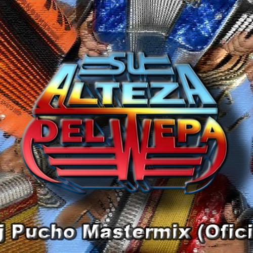 VAMOS A GOZAR WEPA 2014 - DJ PUCHO MASTERMIX