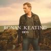 Iris (Ronan Keating) - duet cover with Larissa