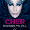 Cher - I Hope You Find It (live D2KTour)