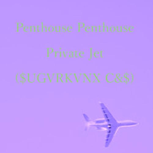 Penthouse Penthouse - Private Jet ($UGVRKVNX C&$)