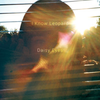 I Know Leopard Daisy Eyes Artwork