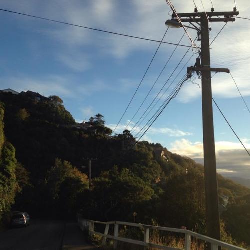 Suburban Wires