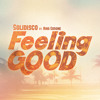 Download Solidisco (ft. Nina Simone) - Feeling Good (Original Mix)