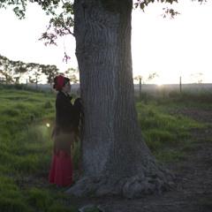 Oak Tree Song