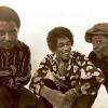 Who Knows (Jimi Hendrix Cover) - Albino Rhino