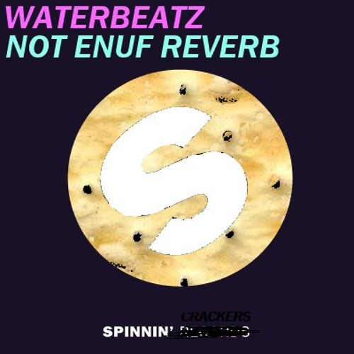 WATERBEATZ - NOT ENUF REVERB (Original Mix)