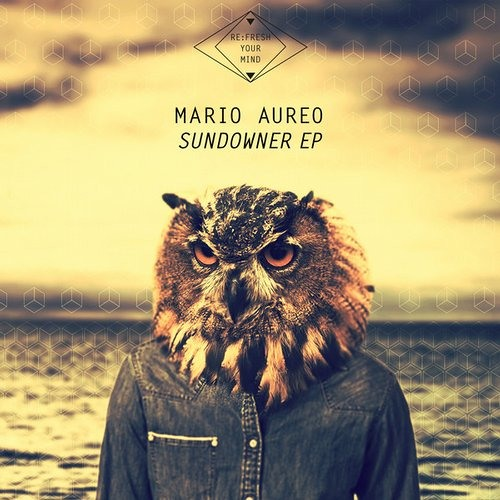 Mario Aureo - Raindrops (Markus Homm Remix) RYM002 snippet