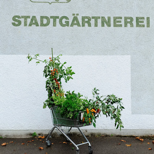 """Ackern für zu Hause - """"Stadtbuure"""""""