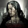 Natalie Merchant: Ladybird (radio Edit)