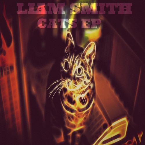 Liam Smith - Hombre De Carnaval (Original Mix) [Zion Records]