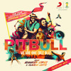 Pitbull ft. Jennifer Lopez & Claudia Leitte - We Are One (Ole Ola) (Olodum Mix)