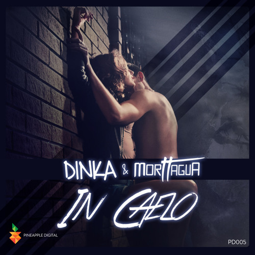 Dinka & Morttagua - In Caelo (Original Mix) Preview  [Pineapple Digital]