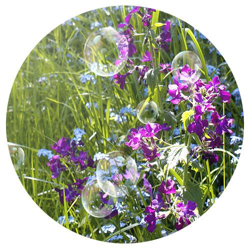 solee - a beautiful season (62 min. mixtape)