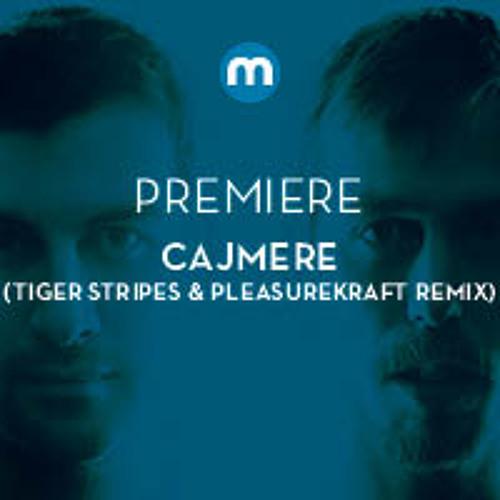 Premiere: Cajmere 'Satisfy' (Tiger Stripes & Pleasurekraft remix) [Cajual]