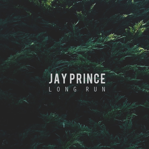 Jay Prince - Long Run