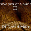 Voyages Of Sound II