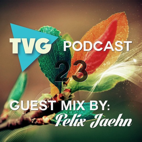 THE VIBE GUIDE Podcast 023 Guest Mix by Felix Jaehn