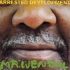 Arrested Development - Mr Wendal (Perfecto Remix)