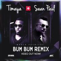 Timaya ft Sean Paul - Bum Bum Remix