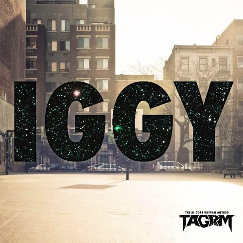 Iggy Azalea - Fancy (TAGRM Remix) *Free Download*