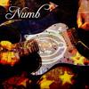Numb (Lead Guitar)
