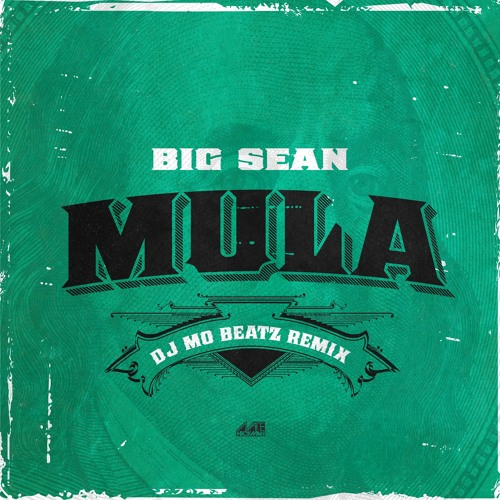 Big Sean - Mula (Dj Mo Beatz Remix)