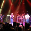 Little Dreamer (Van Halen Cover) 2014/03/02 - Studio Live Take