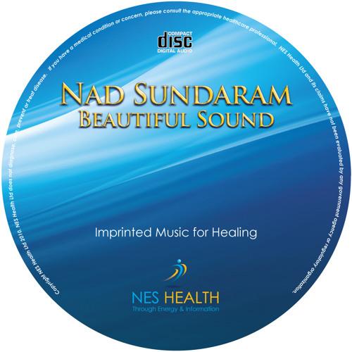 "Nad Sundaram from Album ""Nad Sundaram-Beautiful Sound"""