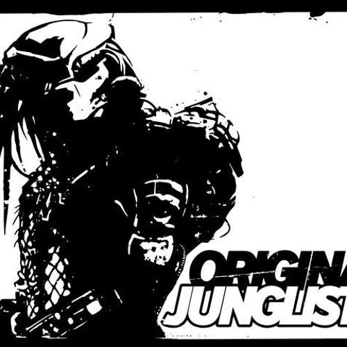 Jungle asylum-Full metal junglist (Original MIx)