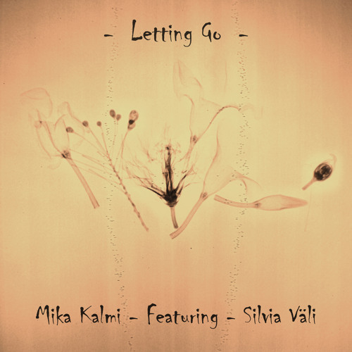 Hymn (From the single - Letting go)