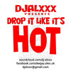 Drop It Like Its Hot Mixtape (2005)