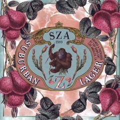 SZA - Warm Winds ft. Isaiah Rashad