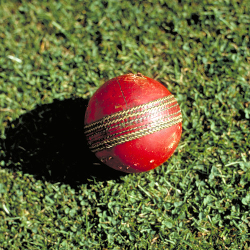 The Science of Cricket: Spin bowling