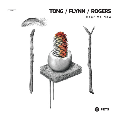 Tong, Flynn, Rogers - Hear Me Now (Original Mix) (Pets Recordings)