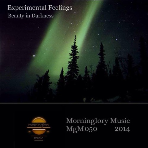 Experimental Feelings - Beauty In Darkness (Neptun 505 Lightning Remix) Preview [Morninglory Music]