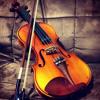 Rains Of Castamere (rough violin cover)