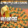 Wild & Free (Karaoke version) FREE DOWNLOAD