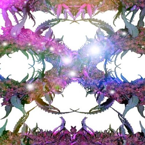 Summer Of Haze - Twilight Occulta