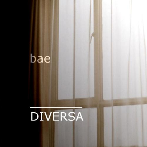 DIVERSA - underscore - bae