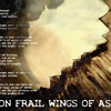 05 On Frail Wings Of Ashes Demo