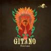 Hamza - Ritmo Del Amor (Album Gitano) - [Wind Horse Records]
