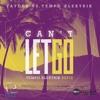 Can't Let Go | Faydee Vs. Tempo Elektrik | OUT NOW | Tempo Elektrik Refix