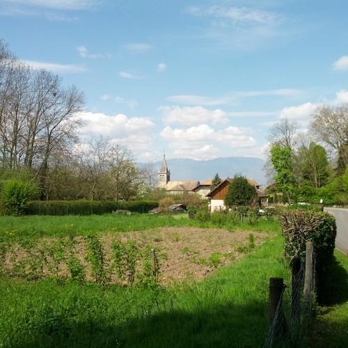 Dawn Chorus - Nernier,  Haute-Savoie, France