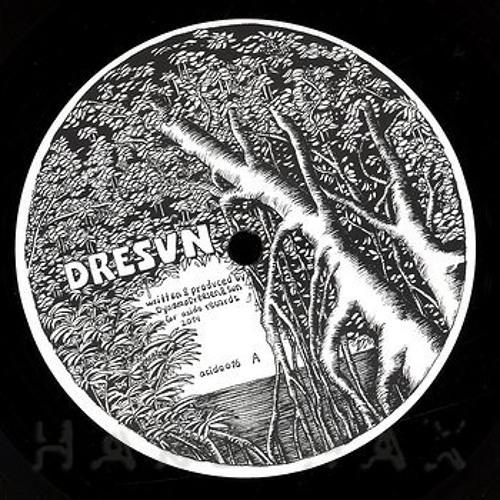 dresvn - acido 16 (shop excerpts)