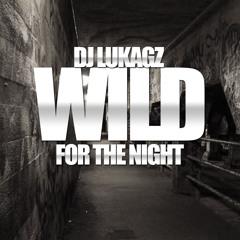 Dj Lukagz - Wild For The Night Mix 2014 (Beyonce,Kendrick Lamar,Future,Lil wayne and more)